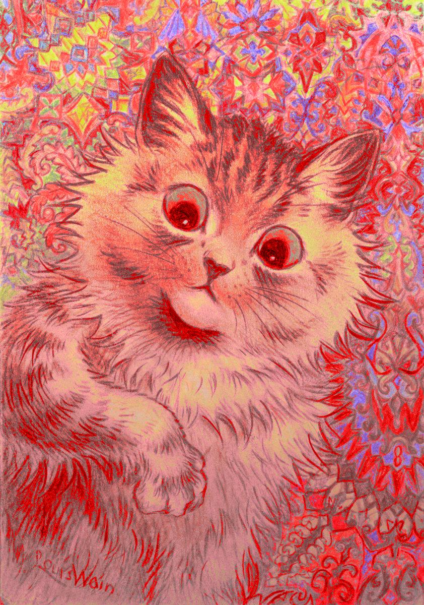 Psychotelepathic Kitten